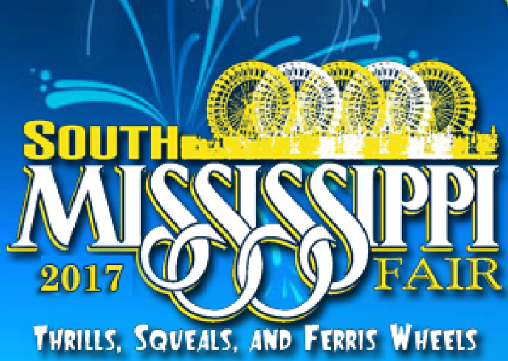 So ms fair logo 2017